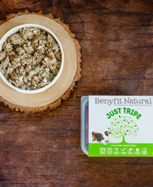 Benyfit Natural Just Tripe 1KG