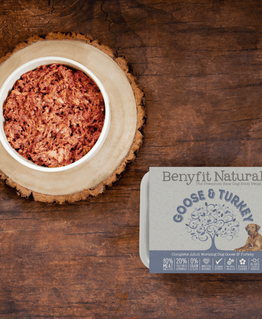 Goose & turkey frozen raw dog food